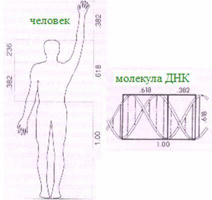 Сакральная геометрия: