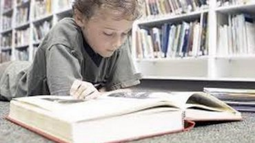 Одни и те же гены отвечают за способности к математике и чтению